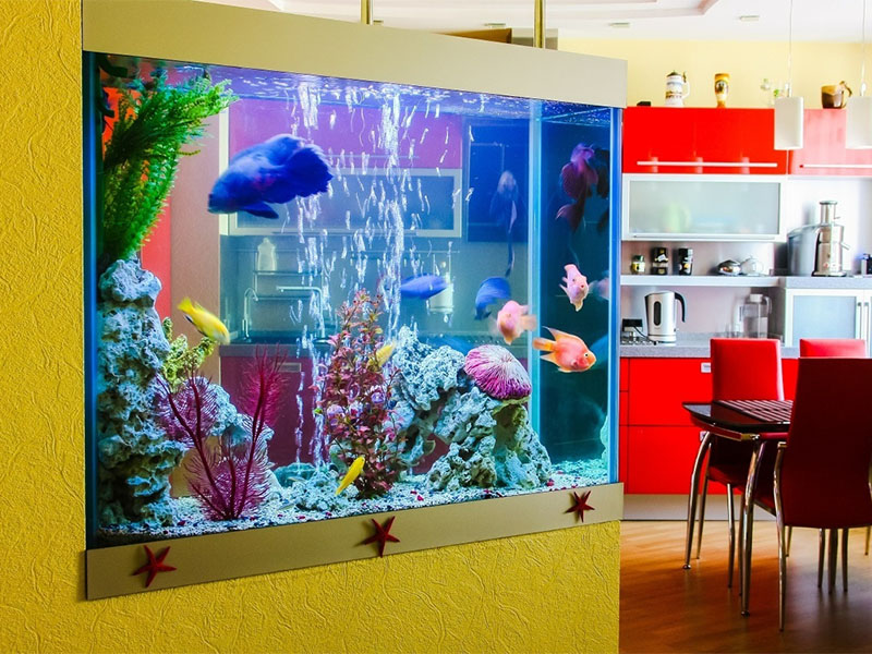 Tepro submersible uv light water purifier customized for pools-6